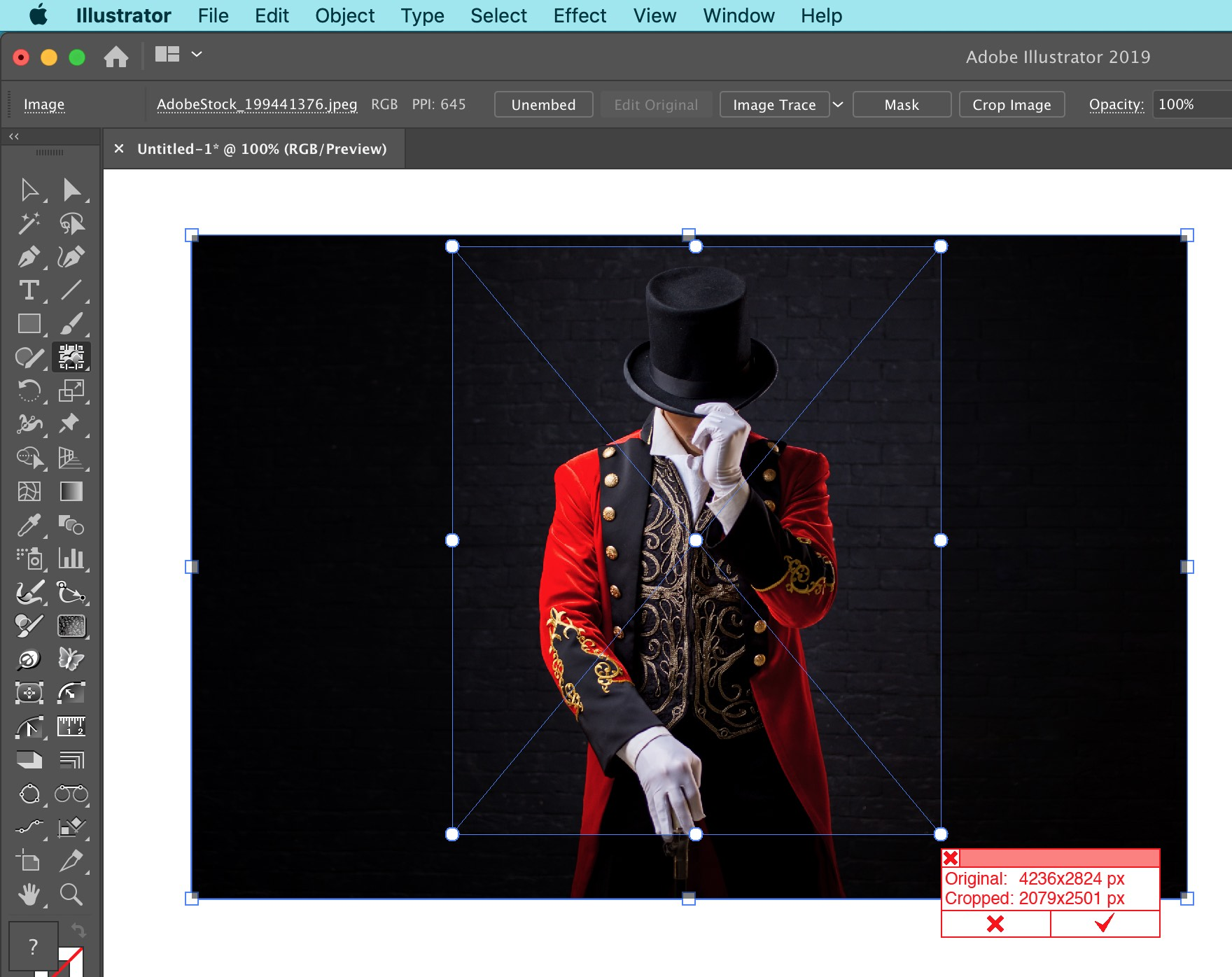 Rasterino Crop Image Tool in action